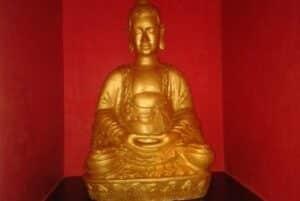 Motel Shangai Buda